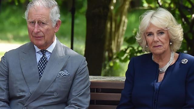 Camilla revela que neto foi levado de emergência para o hospital