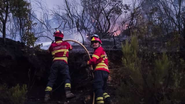 Fogos: Samora Correia dominado, 5 bombeiros feridos. Monchique ainda arde
