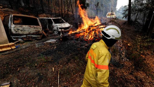 Fogo em Monchique é notícia lá fora. O olhar impressionante da Reuters