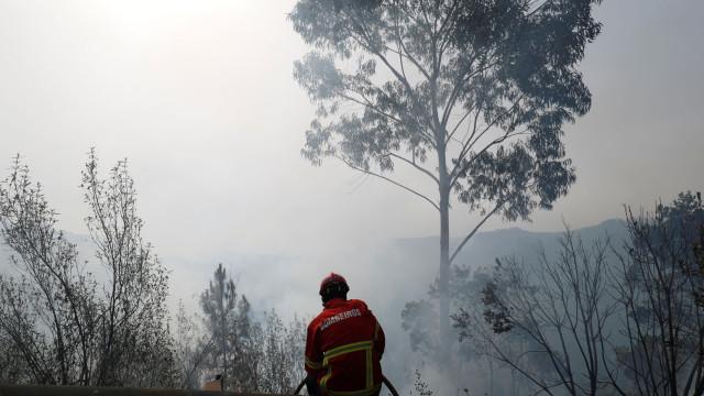EDP cortou eletricidade nalgumas zonas de Monchique por segurança