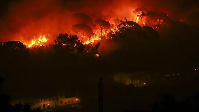 """""""Ninguém tomou grandes medidas de limpeza da floresta em Monchique"""""""