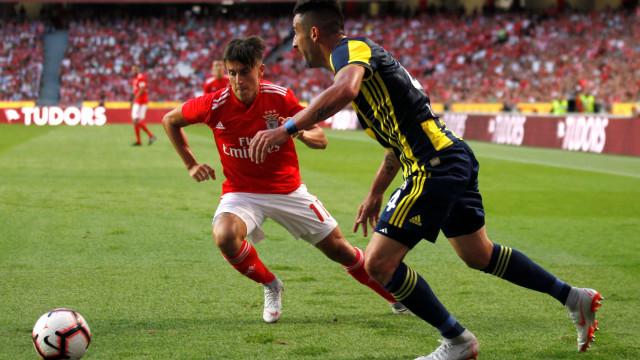 [1-0] Benfica-Fenerbahçe: Já se sabe quantos espetadores estão na Luz