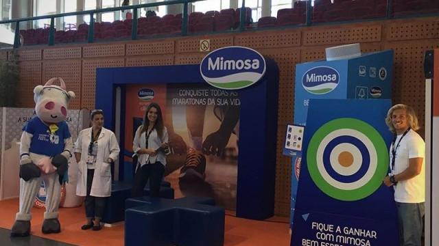"""Lactogal diz-se """"totalmente alheia"""" à venda ilícita da Mimosa em Angola"""