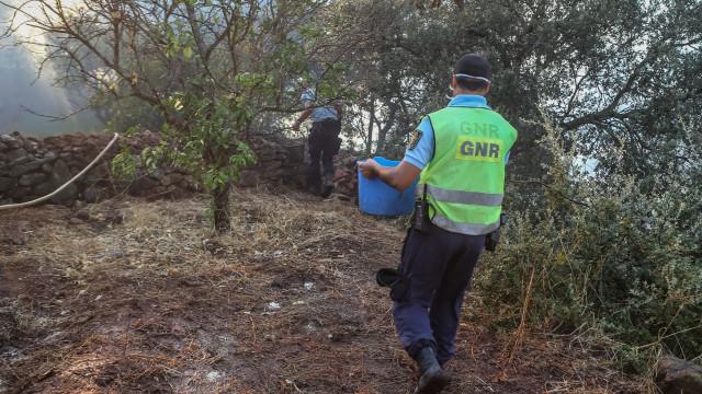 Dezenas de voluntários prestam assistência aos animais feridos