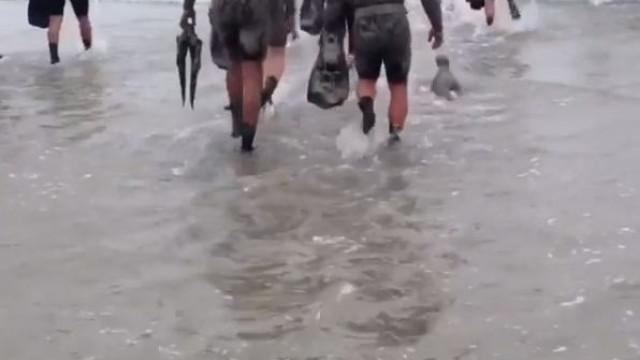 Navy Seals têm aluno inesperado durante exercício... um leão marinho bebé