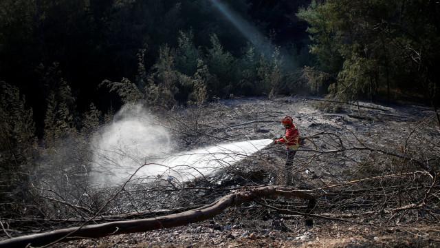 Governo tem em curso levantamento de prejuízos agrícolas em Monchique