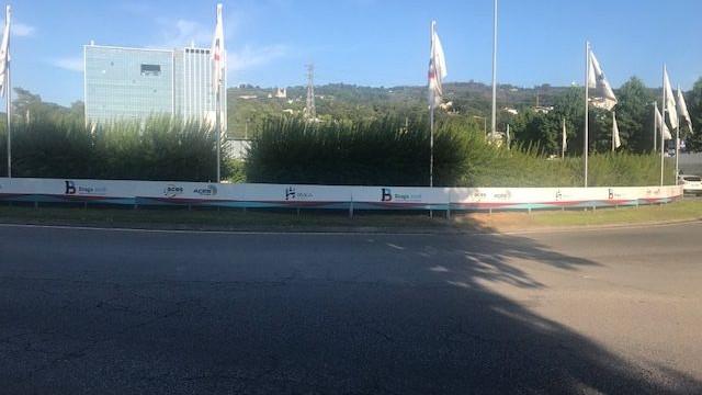 Em Braga há arbustos que podem provocar acidentes rodoviários