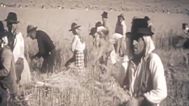 O Ministério da Agricultura faz 100 anos. Já viu o vídeo?