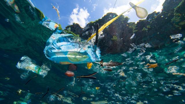 Na luta contra o uso exagerado de plástico, por onde começar?