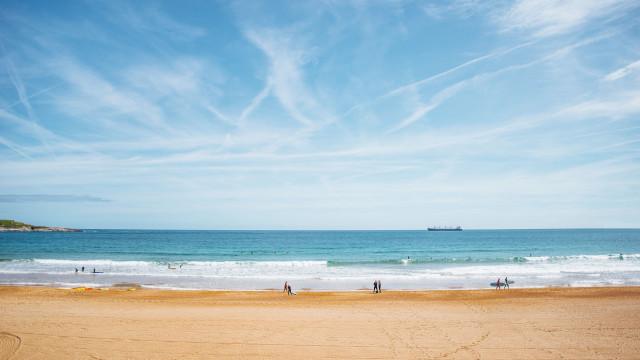 A maior praia de Lisboa é comparada a um jardim do Éden com areia