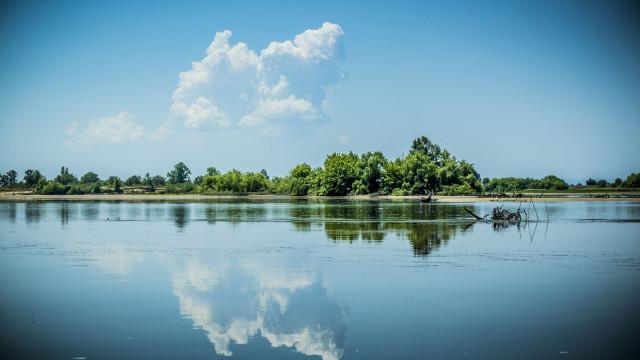 Emitido alerta de agravamento da qualidade da água no rio Tejo