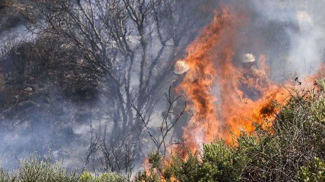 """Incêndio na serra de Sintra não está """"dominado"""". Há nove feridos"""