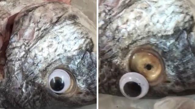 Peixaria punha olhos de plástico nos peixes para estes parecerem frescos