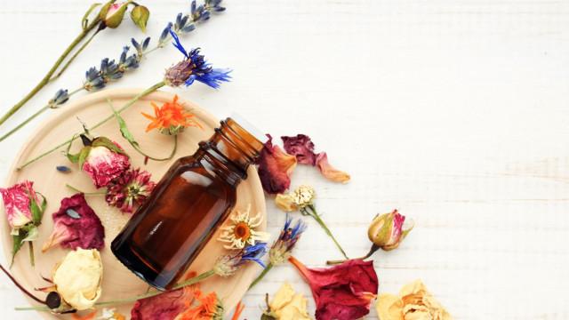 Para bem usufruir dos óleos essenciais, comece por percebe-los