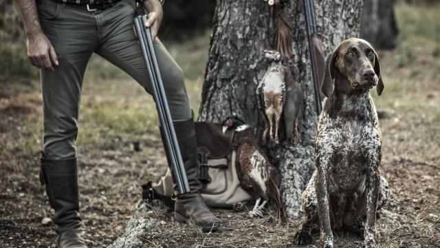 Governo proíbe caça em zonas ardidas em Monchique, mas há uma exceção