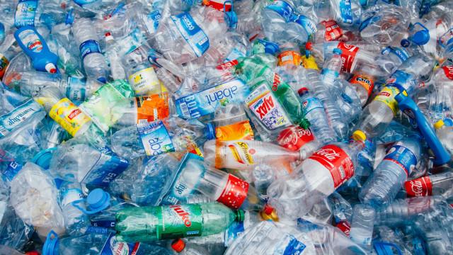 Sociedade Ponto Verde e L'Oréal transformam plástico em arte