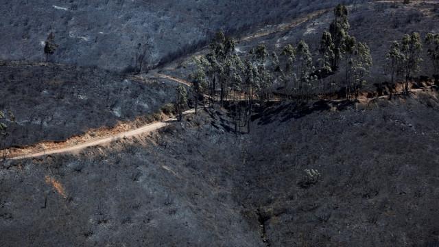 Fogo em Alijó está em fase de resolução