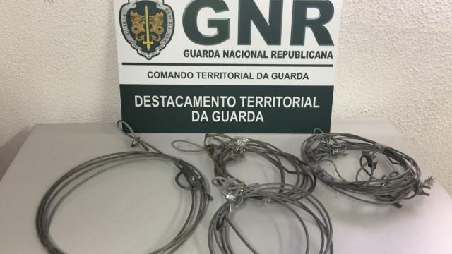 Caçador de javalis obrigado a pagar multa de 250 euros por usar laços