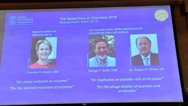 Nobel da Química para Frances Arnold, George Smith e Gregory Winter