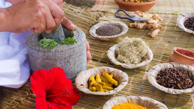 Este mês, há workshops sobre ayurveda no Museu do Oriente
