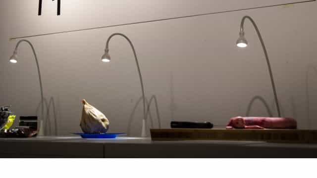 Vai abrir um museu de 'Comida Nojenta' na Suécia