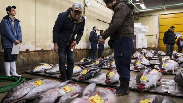 Famoso mercado de peixe de Tóquio muda de sítio ao fim de 80 anos