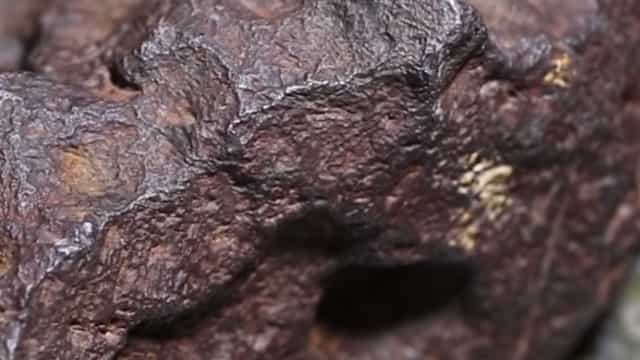 Durante 30 anos usou meteorito de 87 mil euros como calço para a porta