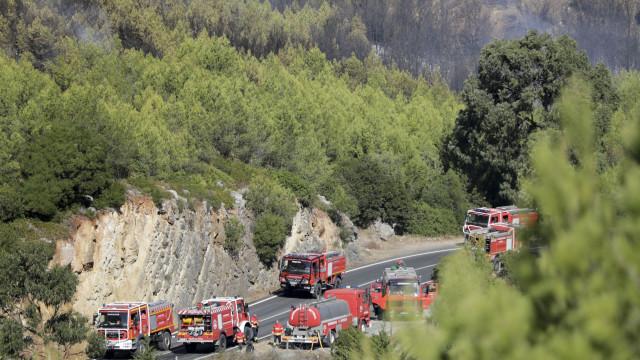 Serra de Sintra: Trabalhos de rescaldo prosseguem até quarta-feira
