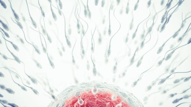 Entenda o que a poluição e a comida de plástico fazem ao seu esperma