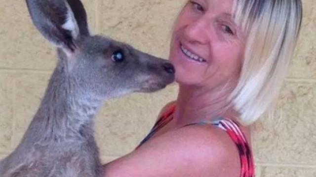 Canguru ataca violentamente família australiana