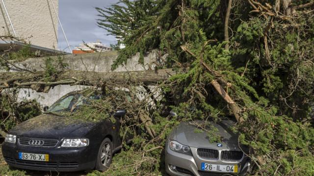 Tempestade Leslie: Governo alarga apoios a mais oito concelhos