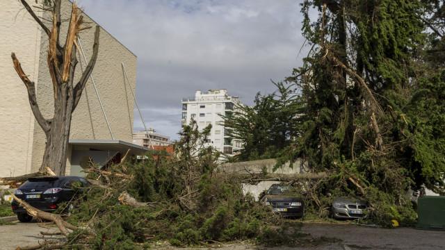 Mau tempo: Cinco milhões de euros de prejuízos na Marinha Grande