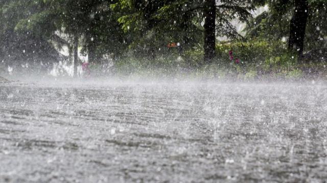 """Agricultores estão com """"a corda na garganta"""" devido à falta de chuva"""