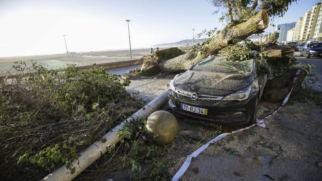 Autarcas lamentam falta de apoios do Governo após tempestade Leslie