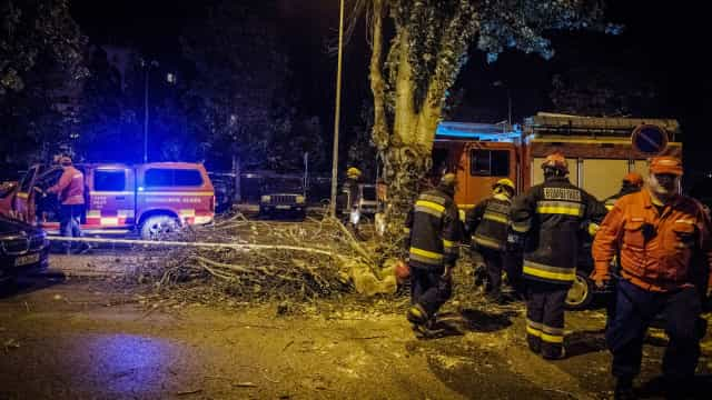 Parques infantis de Lisboa encerrados pela tempestade Leslie já reabriram