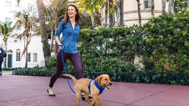 Sim, ter um cão vai ajudá-lo a encontrar o amor. A ciência explica