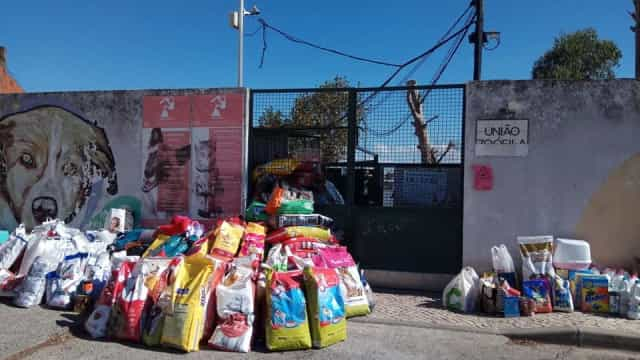 """Depois de apelo, União Zoófila partilha """"extraordinários gestos de apoio"""""""