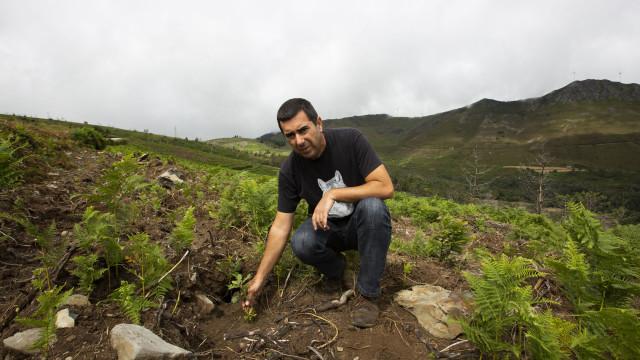Presidente da Quercus eleito 'vice' da maior Federação de Ambientalistas