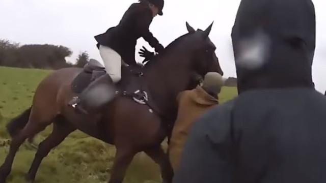 Caçadora alvo da ira de ativistas morreu ao cair do seu cavalo