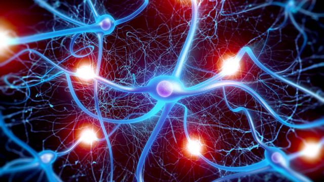 Morte de células cerebrais na doença de Alzheimer é benéfica
