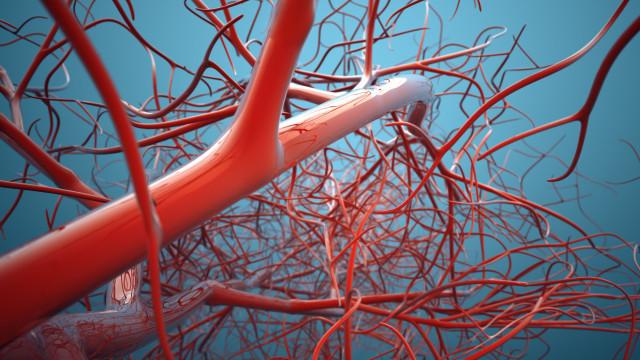Complicações vasculares da Diabetes: Prevenir para evitar