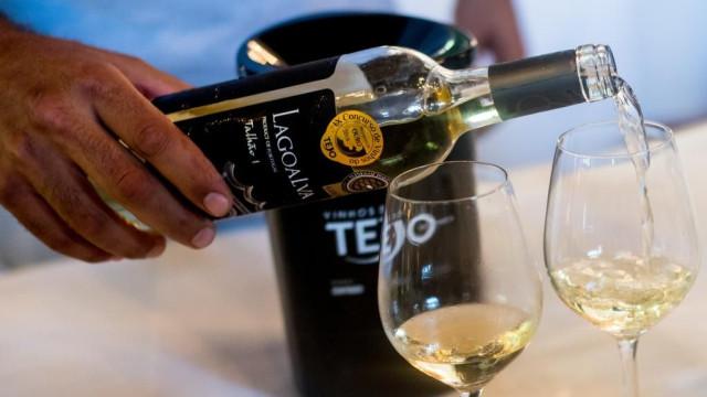 Vinhos do Tejo encetam parceria com a TAP e levam néctares a bordo