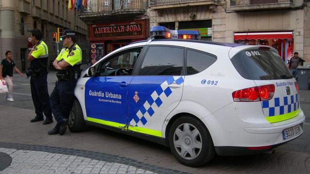 Cão morde cara de homem para defender a dona de maus tratos em Espanha