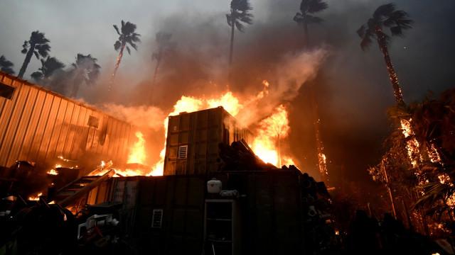 Incêndios 'inflamam' relações entre governos federal e estadual