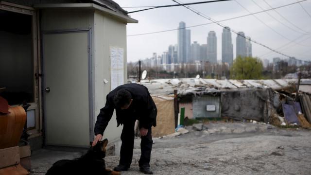 Maior matadouro de cães da Coreia do Sul desmantelado