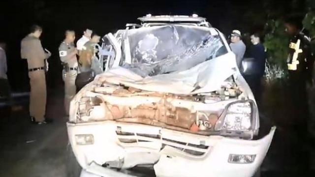 Carro embate contra elefante na Tailândia e animal mata condutor