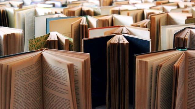 Prémio Literário João da Silva Correia torna-se anual