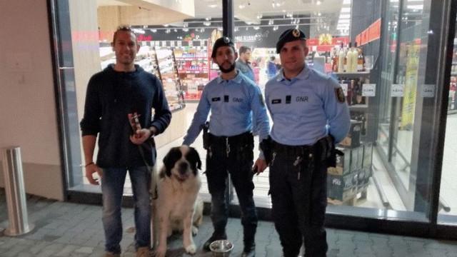 GNR resgata cão São Bernardo perdido em Alenquer