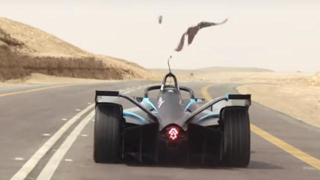 Numa 'drag race' entre Felipe Massa e um falcão, quem sairá vencedor?