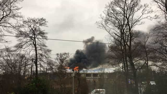 Jardim zoológico evacuado em Inglaterra por causa de incêndio